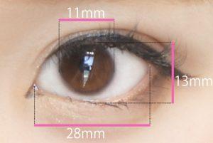 裸眼サイズ